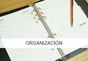 organizacionsmall-300x207