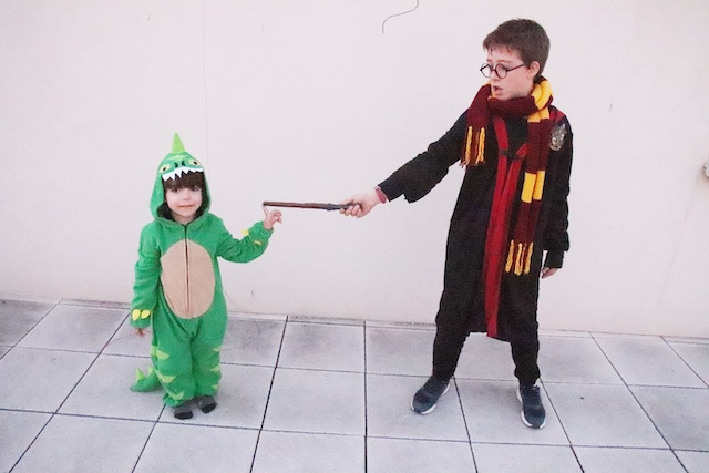 vegaoo harry dino